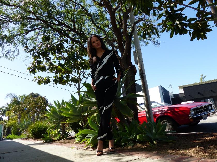 Amanda Luttrell Garrigus Kenneth Cole Jumpsuit w:car
