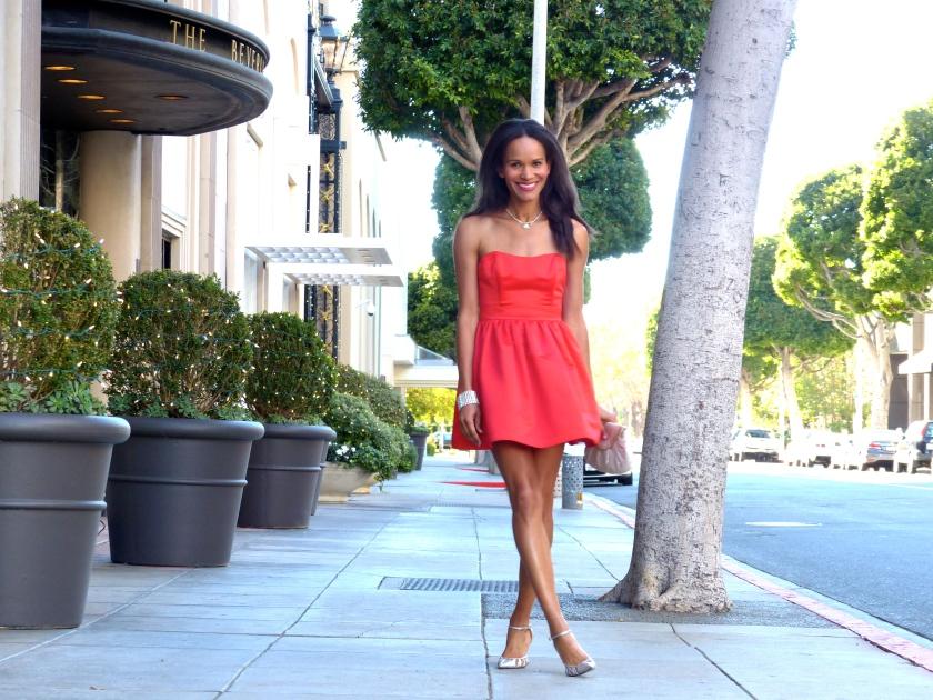 Amanda Garrigus Forever 21 Holiday Dress