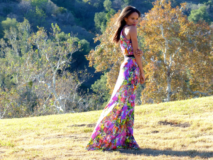 Amanda Garrigus in a long multicolored Kevan Hall dress