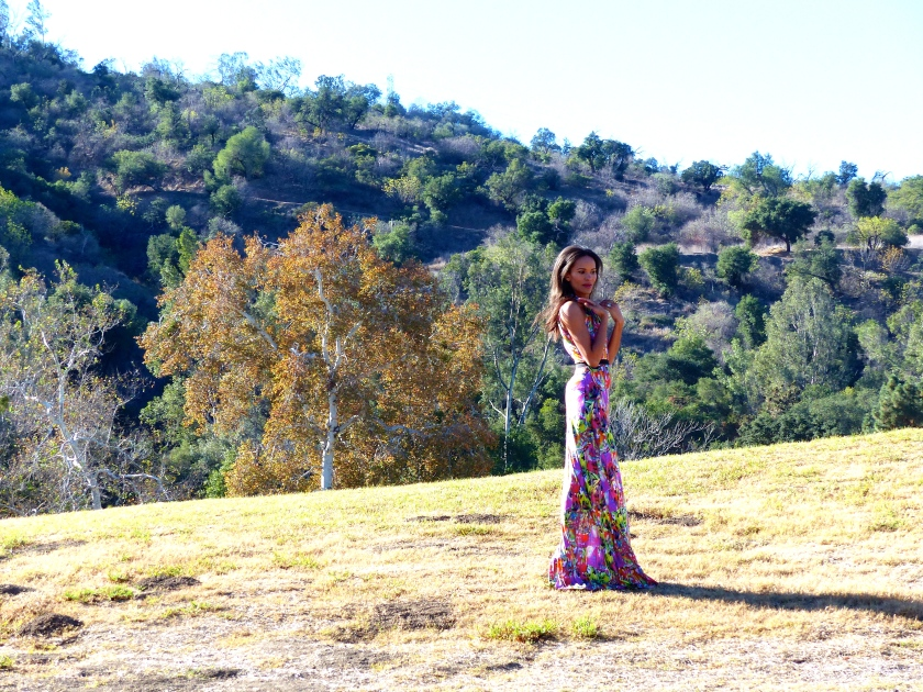 Amanda Garrigus in Butterfly Dress by Kevan Hall