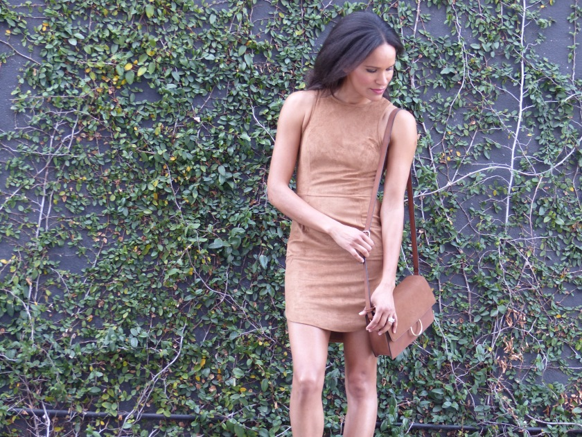 Amanda Garrigus Faux Suede Dress and faux suede bag