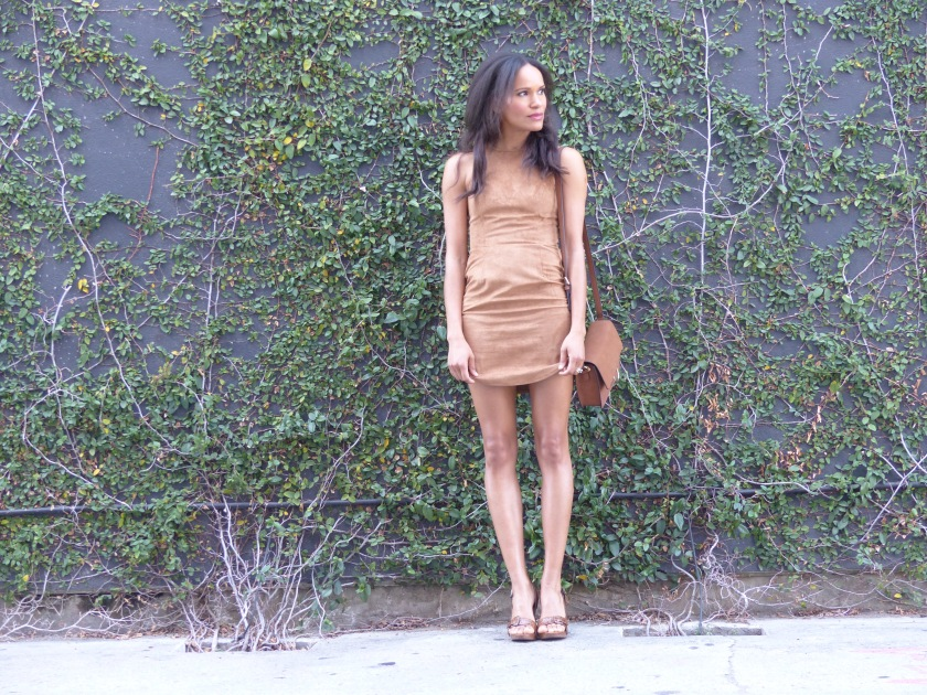 Amanda Garrigus Faux Suede Dress