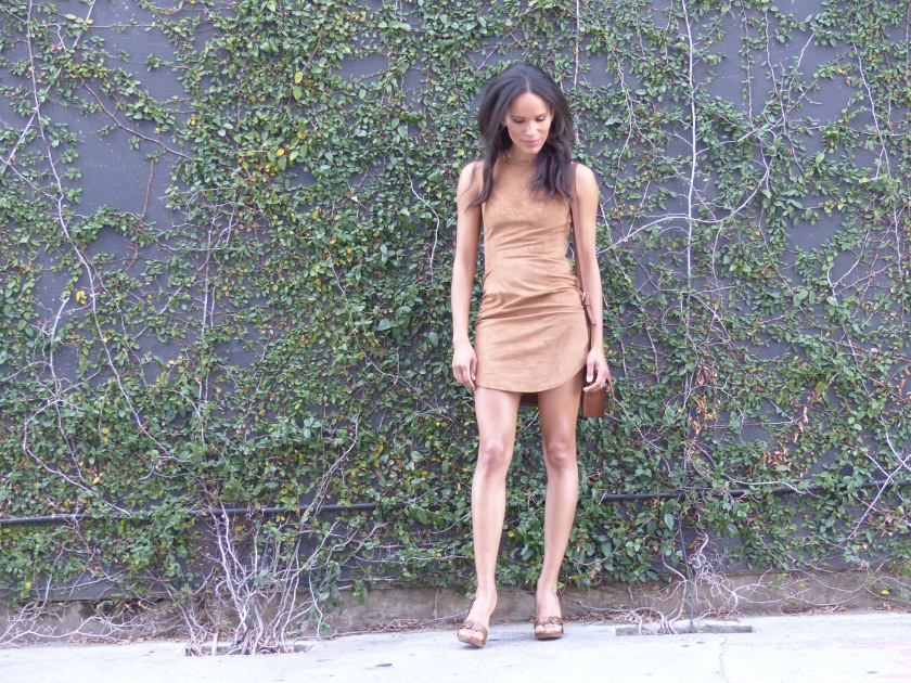 Amanda Garrigus Ultra Suede Dress
