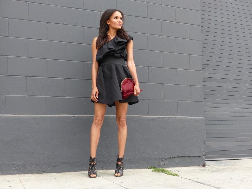 Amanda Garrigus wearing Lanvin for H&M